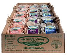 Packaged Organic Mushrooms